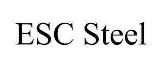 mark for ESC STEEL, trademark #85795080