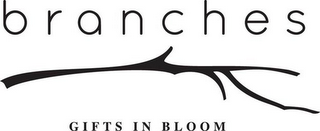 mark for BRANCHES GIFTS IN BLOOM, trademark #85797337