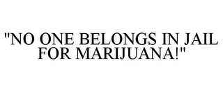 "mark for ""NO ONE BELONGS IN JAIL FOR MARIJUANA!"", trademark #85798994"