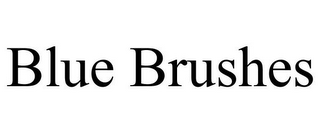 mark for BLUE BRUSHES, trademark #85814675