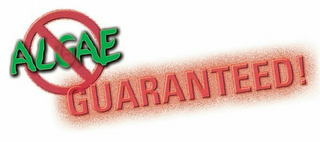mark for ALGAE GUARANTEED!, trademark #85832536