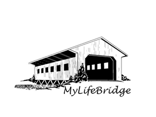 mark for MYLIFEBRIDGE, trademark #85863028
