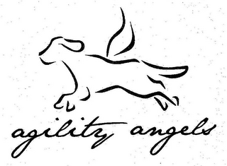 mark for AGILITY ANGELS, trademark #85868095