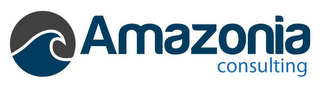 mark for AMAZONIA CONSULTING, trademark #85869353