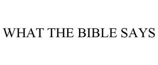 mark for WHAT THE BIBLE SAYS, trademark #85876092