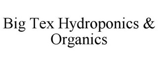 mark for BIG TEX HYDROPONICS & ORGANICS, trademark #85878347