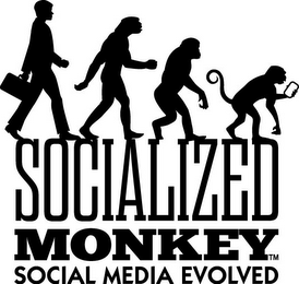 mark for SOCIALIZED MONKEY SOCIAL MEDIA EVOLVED, trademark #85880287