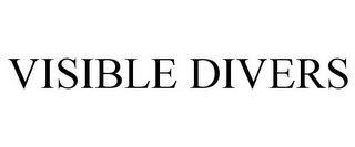mark for VISIBLE DIVERS, trademark #85935722