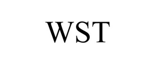 mark for WST, trademark #85939035