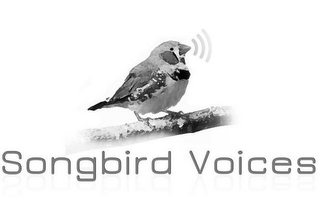mark for SONGBIRD VOICES, trademark #85944515