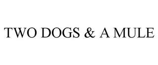 mark for TWO DOGS & A MULE, trademark #85965170
