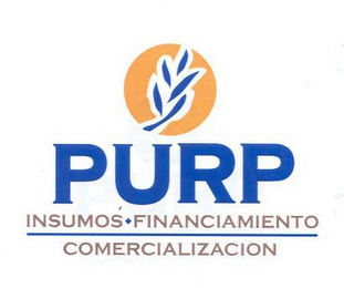 mark for PURP INSUMOS · FINANCIAMENTO COMERCIALIZACION, trademark #85979253