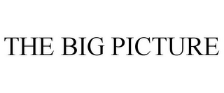 mark for THE BIG PICTURE, trademark #86005704