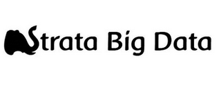 mark for STRATA BIG DATA, trademark #86120129