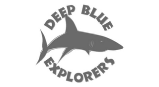 mark for DEEP BLUE EXPLORERS, trademark #86468068