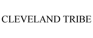 mark for CLEVELAND TRIBE, trademark #87217818