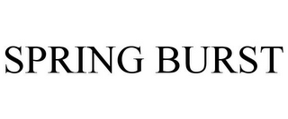 mark for SPRING BURST, trademark #87494990