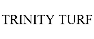 mark for TRINITY TURF, trademark #87615287