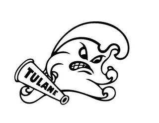 mark for TULANE, trademark #87649728
