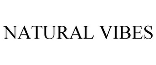 mark for NATURAL VIBES, trademark #87787098