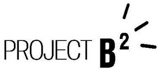mark for PROJECT B2, trademark #87808877