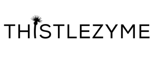 mark for THISTLEZYME, trademark #87810754