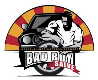 mark for BAD BOY SALVE SEALS · SHINES · SOFTENS · SECURES, trademark #87812998