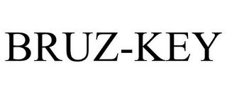 mark for BRUZ-KEY, trademark #87830492