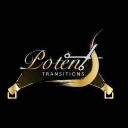 mark for POTENT TRANSITIONS, trademark #87830612
