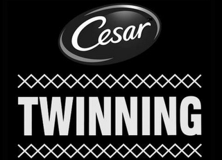 mark for CESAR TWINNING, trademark #88009047